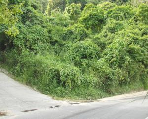 Terreno En Ventaen Caracas, Oripoto, Venezuela, VE RAH: 19-16097