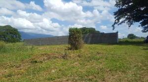 Terreno En Ventaen San Felipe, Cocorote, Venezuela, VE RAH: 19-18634