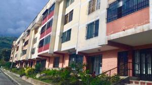 Apartamento En Ventaen Merida, El Rosario, Venezuela, VE RAH: 19-18777