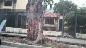 Casa En Alquileren Barquisimeto, El Parral, Venezuela, VE RAH: 19-18820