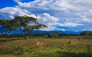 Terreno En Ventaen San Felipe, Cocorote, Venezuela, VE RAH: 20-686