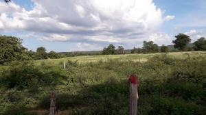 Terreno En Ventaen Carora, Municipio Torres, Venezuela, VE RAH: 20-836