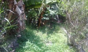 Terreno En Ventaen Merida, Mucuchies, Venezuela, VE RAH: 20-1045