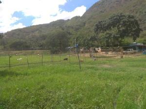 Terreno En Ventaen Cabudare, Parroquia Agua Viva, Venezuela, VE RAH: 20-1399