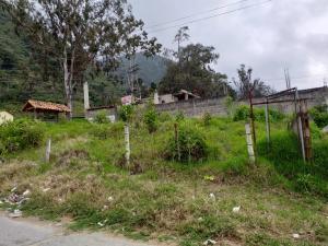 Terreno En Ventaen La Puerta, Via Principal, Venezuela, VE RAH: 20-1576