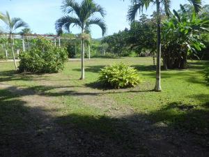 Terreno En Ventaen Municipio Montalban, Aguirre, Venezuela, VE RAH: 20-1984