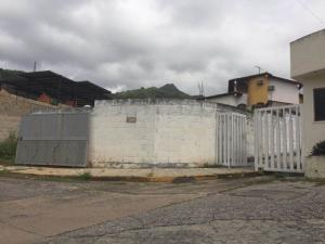 Terreno En Ventaen Maracay, El Limon, Venezuela, VE RAH: 20-2686