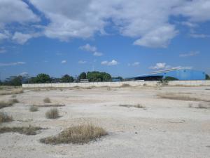 Terreno En Ventaen Quibor, Parroquia Juan Bautista Rodriguez, Venezuela, VE RAH: 20-2988