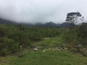 Terreno En Ventaen Merida, La Culata, Venezuela, VE RAH: 20-3170