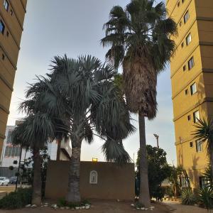 Apartamento En Ventaen Coro, Sector Bobare, Venezuela, VE RAH: 20-3556