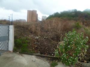 Terreno En Ventaen Municipio Naguanagua, Palma Real, Venezuela, VE RAH: 20-3787