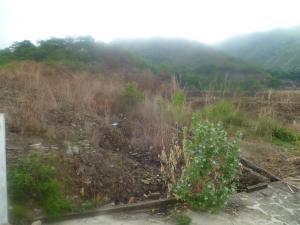 Terreno En Ventaen Municipio Naguanagua, Palma Real, Venezuela, VE RAH: 20-3789