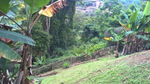 Terreno En Ventaen Caracas, Mariche, Venezuela, VE RAH: 20-3924