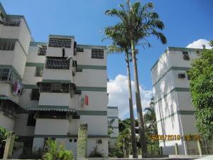 Apartamento En Ventaen Caracas, Caricuao, Venezuela, VE RAH: 20-3975