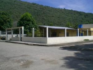 Casa En Ventaen Ocumare De La Costa, El Playon, Venezuela, VE RAH: 20-3994