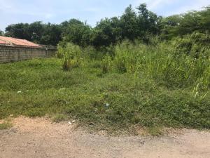 Terreno En Ventaen Tucacas, Tucacas, Venezuela, VE RAH: 20-4114