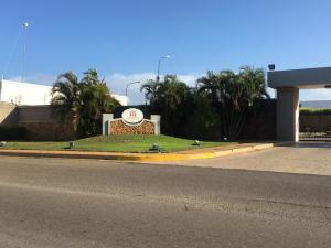 Terreno En Ventaen Punto Fijo, Zarabon, Venezuela, VE RAH: 20-4278