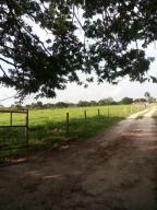 Terreno En Ventaen Merida, Avenida 1, Venezuela, VE RAH: 20-5464