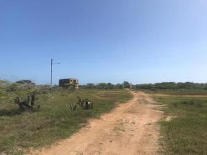 Terreno En Ventaen Adicora, Adicora, Venezuela, VE RAH: 20-5761