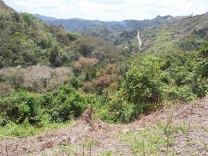 Terreno En Ventaen Municipio Los Salias, La Peña, Venezuela, VE RAH: 20-5918