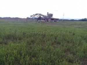 Terreno En Ventaen Carora, Municipio Torres, Venezuela, VE RAH: 20-7682