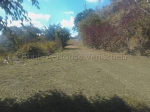 Terreno En Ventaen Caracas, Gavilan, Venezuela, VE RAH: 20-7834