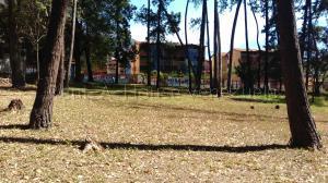 Terreno En Ventaen Ejido, Aguas Calientes, Venezuela, VE RAH: 20-8437