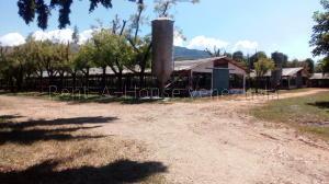 Casa En Ventaen Municipio Miranda, Miranda, Venezuela, VE RAH: 20-9312