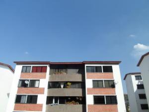 Apartamento En Ventaen Los Teques, La Quinta, Venezuela, VE RAH: 20-10187
