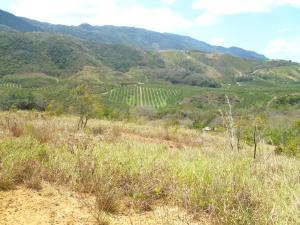 Terreno En Ventaen Nirgua, Las Piedritas, Venezuela, VE RAH: 20-10973