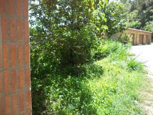 Terreno En Ventaen San Antonio De Los Altos, La Peña, Venezuela, VE RAH: 20-13512