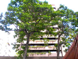 Apartamento En Ventaen Caracas, Los Palos Grandes, Venezuela, VE RAH: 20-14228