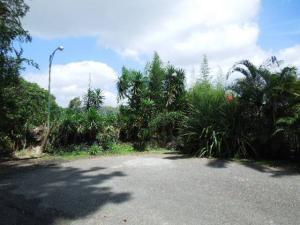 Terreno En Ventaen Caracas, Oripoto, Venezuela, VE RAH: 20-15482