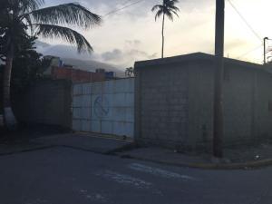 Terreno En Alquileren Parroquia Naiguata, Camuri Grande, Venezuela, VE RAH: 20-15898