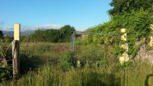 Terreno En Ventaen Margarita, Guacuco, Venezuela, VE RAH: 20-16015