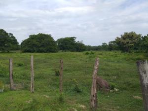 Terreno En Ventaen Cabimas, Zulia, Venezuela, VE RAH: 20-16193