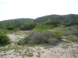 Terreno En Ventaen Margarita, Porlamar, Venezuela, VE RAH: 20-16467