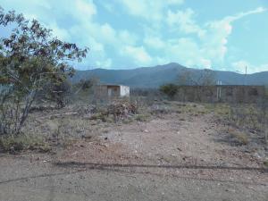 Terreno En Ventaen Margarita, San Juan, Venezuela, VE RAH: 20-20684