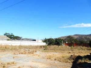 Terreno En Ventaen Villa De Cura, Centro, Venezuela, VE RAH: 20-20715