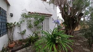 Anexo En Alquileren Caracas, El Junko, Venezuela, VE RAH: 20-20729