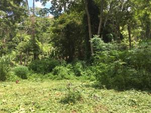 Terreno En Ventaen Caracas, Caicaguana, Venezuela, VE RAH: 20-12744