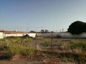 Terreno En Ventaen Municipio San Francisco, La Coromoto, Venezuela, VE RAH: 20-22282