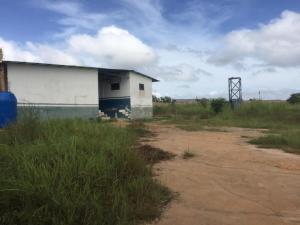 Terreno En Ventaen Ciudad Bolivar, Av La Paragua, Venezuela, VE RAH: 20-22456