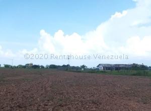 Terreno En Ventaen Francisco De Miranda, Piritu Becerra, Venezuela, VE RAH: 20-25139