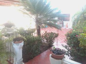Casa En Ventaen Margarita, Pedregales, Venezuela, VE RAH: 21-698