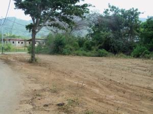 Terreno En Ventaen Margarita, Tacarigua, Venezuela, VE RAH: 21-2940