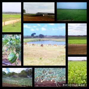 Terreno En Ventaen Tucupido, Rivero, Venezuela, VE RAH: 21-2528