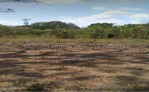 Terreno En Ventaen Guacara, Vigirima, Venezuela, VE RAH: 21-2687