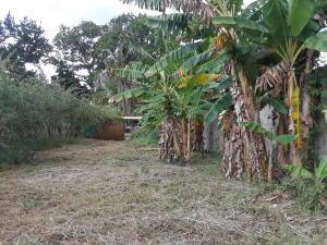Terreno En Ventaen Municipio San Diego, Las Morochas I, Venezuela, VE RAH: 21-2807