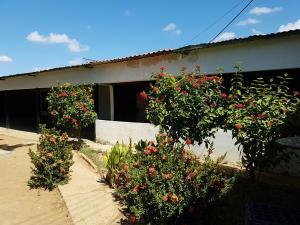 Local Comercial En Ventaen Coro, Sector San Jose, Venezuela, VE RAH: 21-2924